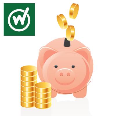 Cash-pig (1)